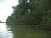 Insel im Rheinhafen